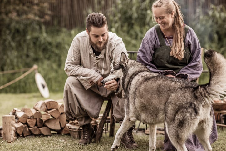 Beautiful Blonde viking warrior female sitting with a handsome bearded male soldier and a wolf in a traditional campsite