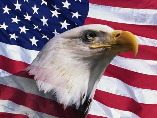 https://www.allposters.com/-sp/Bald-Eagle-and-American-Flag-Posters_i8667182_.htm