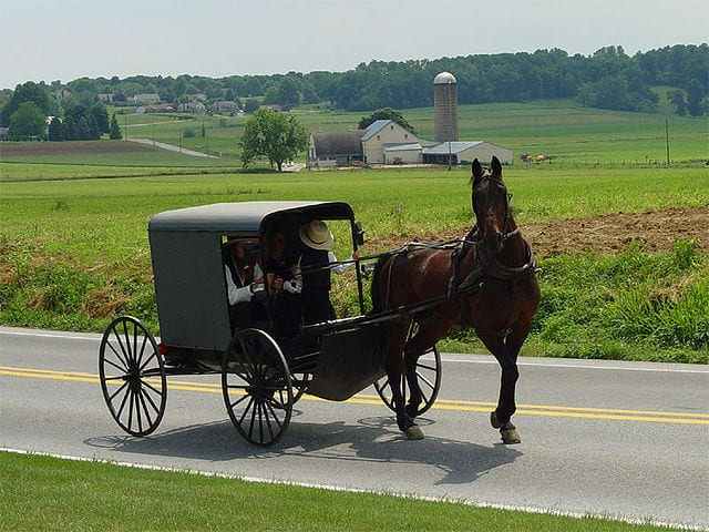An Amish horse and buggy,.