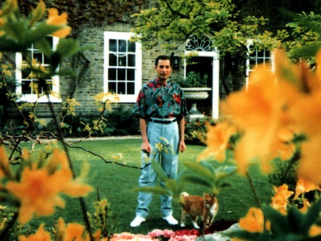Last known photograph of Freddie Mercury