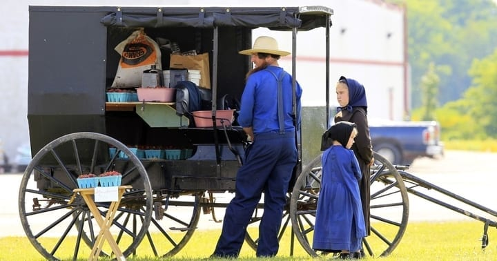 amish carriage, store