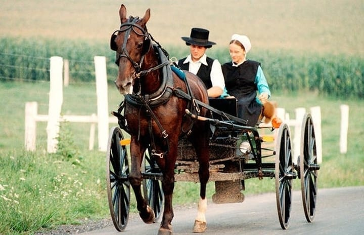 amish, horse buggy, carriage