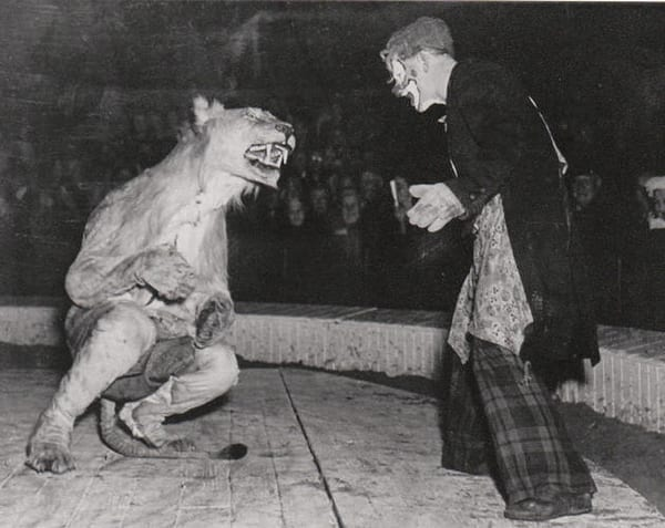 circus lion taming costume