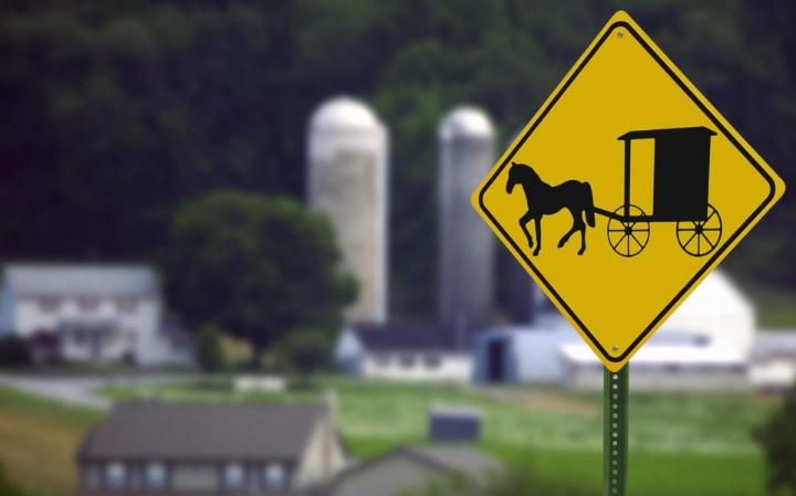 The history of the Amish and why they still rock horse and buggies