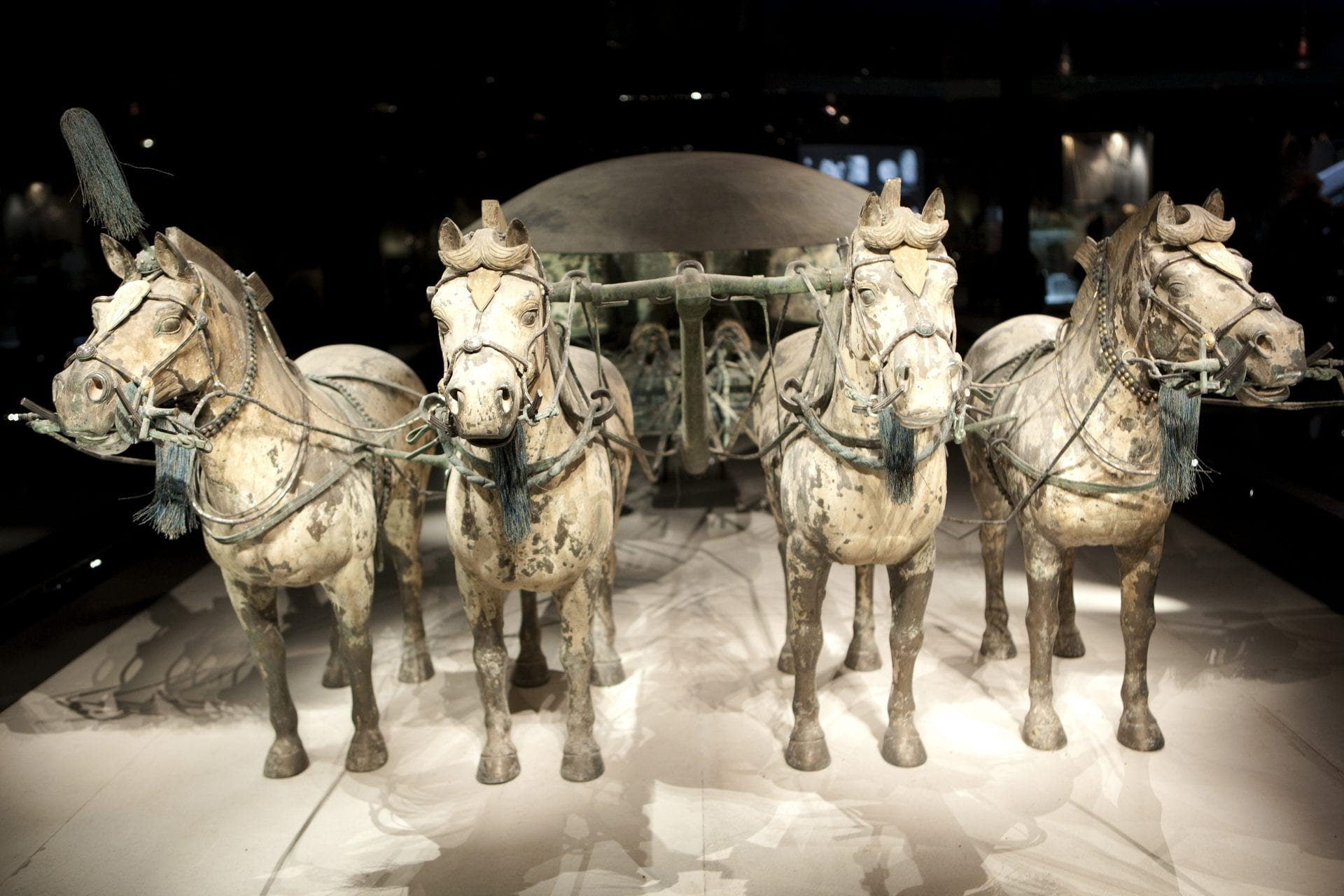 Terracotta-warrior-army-Emperor-Qin-Shi-Huang-first-emperor-of-China-animals-horses-chariots