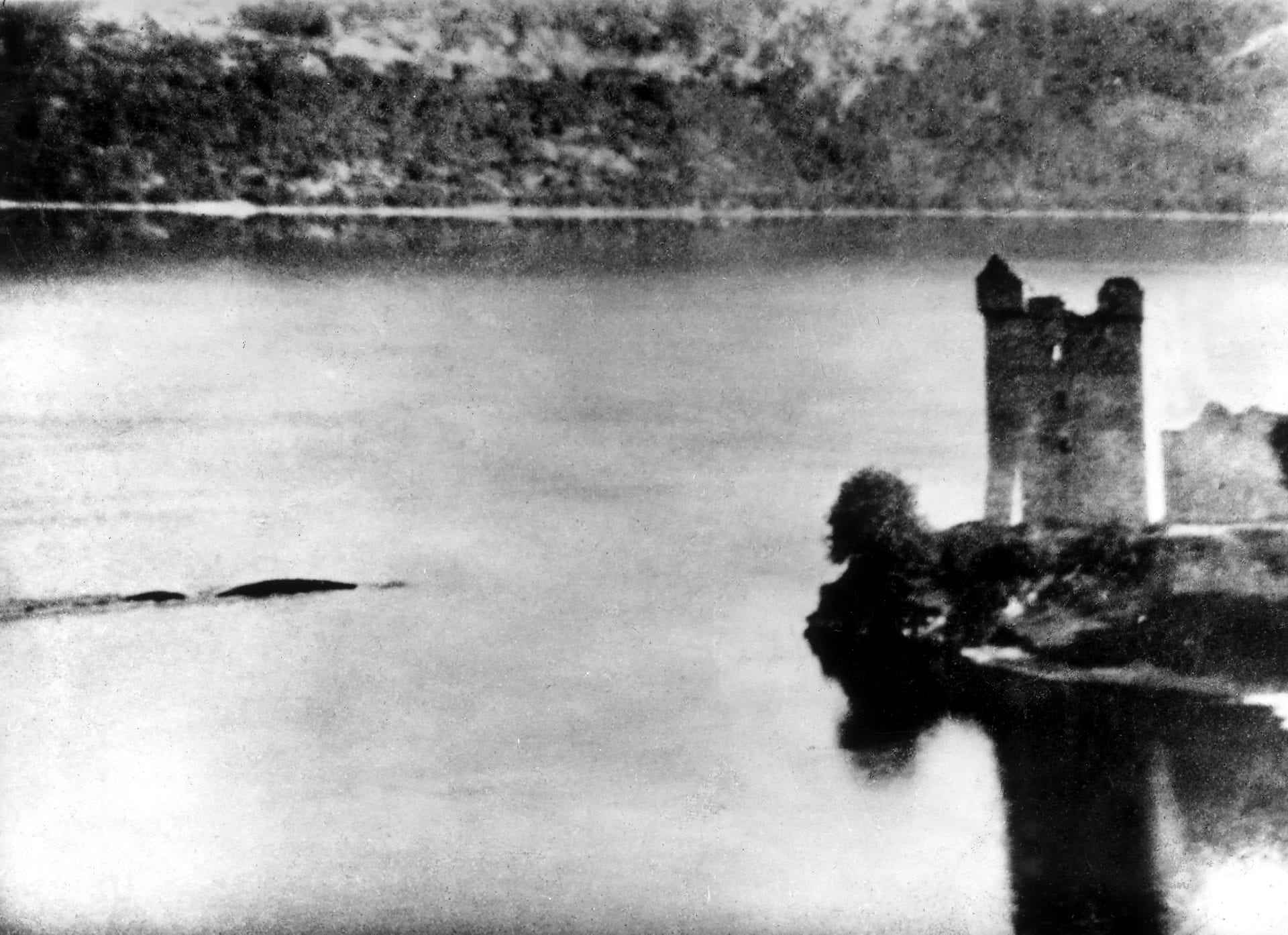 black and white image of Loch Ness and possibly the Loch Ness Monster