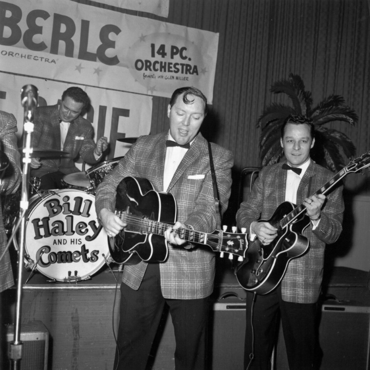 bill haley and his comets performing